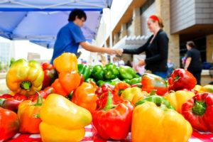 Campus Farmer's Market Stand